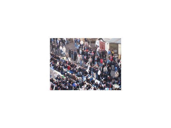Мусульмане пообещали не резать баранов публично  на Сенном рынке