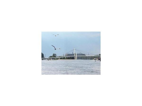Мост через Серный ждет ремейка