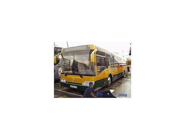 Дешевые автобусы пришли с дефектами