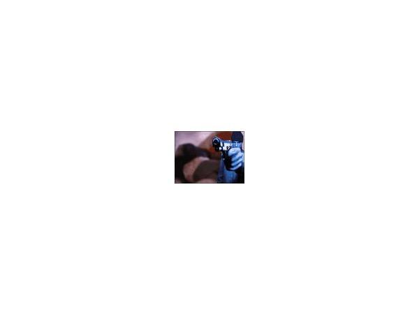 «Фонтанка» увидела особую жестокость