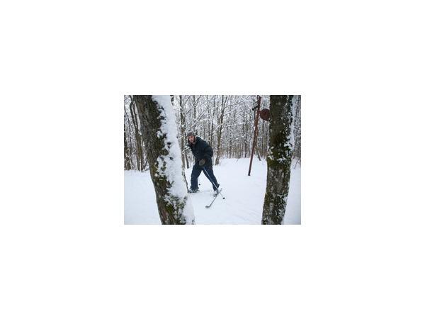 «Лыжные стрелы» вывезут спортсменов-любителей в область