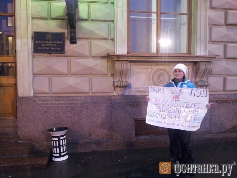 Защитники Малиновки спросили депутатов, кому нужен парк под линией электропередач (Иллюстрация 1 из 1) (Фото: Венера Галеева)