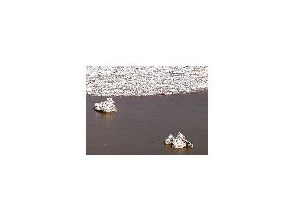 На Оби в районе Барнаула начался ледоход