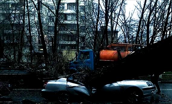 Скриншот видеосюжета с youtube. Автор Pavel Metluk