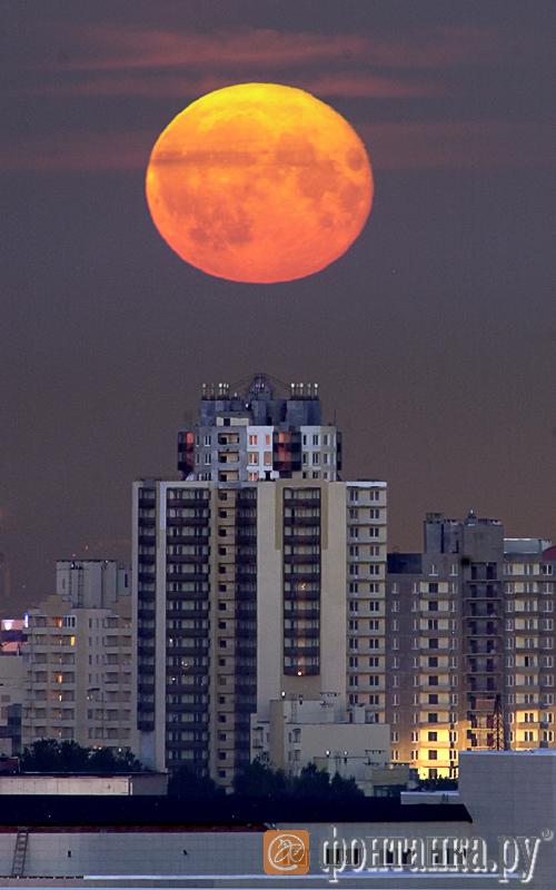 Суперлуние 12 июля 2014 в Петербурге: в городе на Неве Луна будет казаться крупнее, чем в Москве (Иллюстрация 1 из 1) (Фото: Дмитрий Ловецкий,