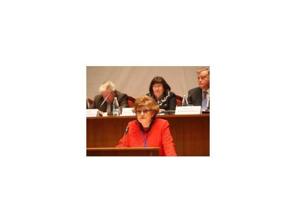 Вербицкая: Закон о запрете нецензурной лексики не нужен