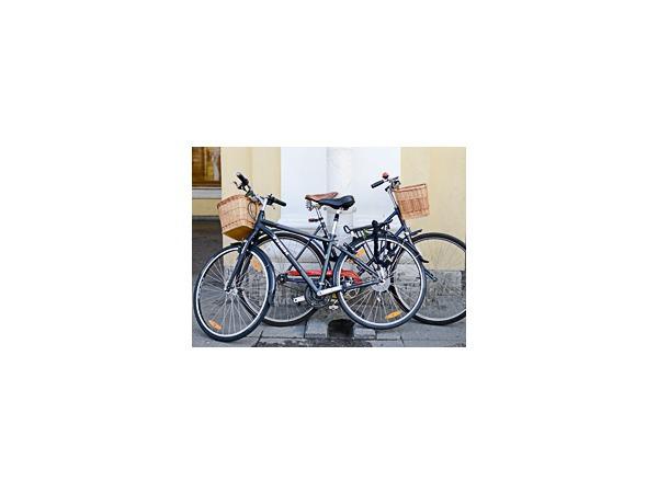 Полиция ищет велосипеды муниципала Богатушина