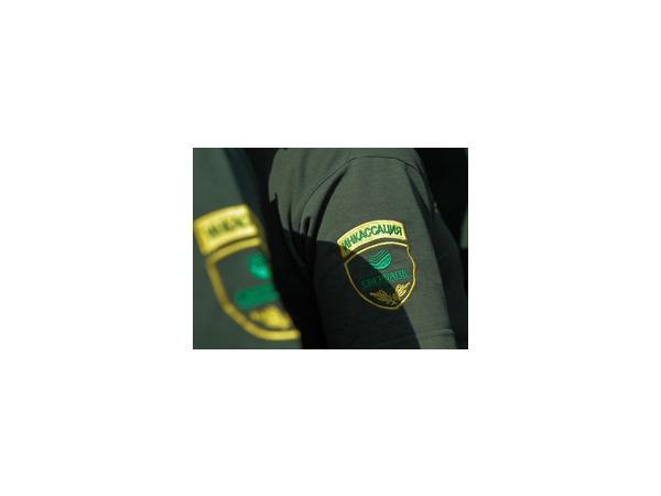 Преступник не смог украсть деньги из отделения Сбербанка в Кургане