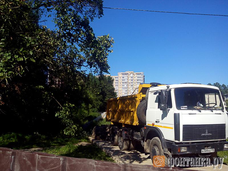 Подвоз мусора для засыпки пруда