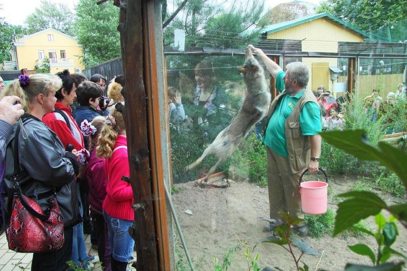 Источник: официальный сайт Ленинградского зоопарка
