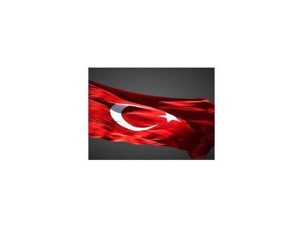 Мужчина выстрелил в вывеску посольства Турции в Москве