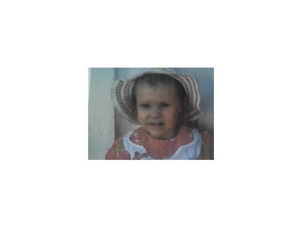 Похищенную из детского сада Томска девочку ищут более 3 тысяч человек
