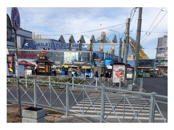 Читатель: В Купчино появился необычный пешеходный переход