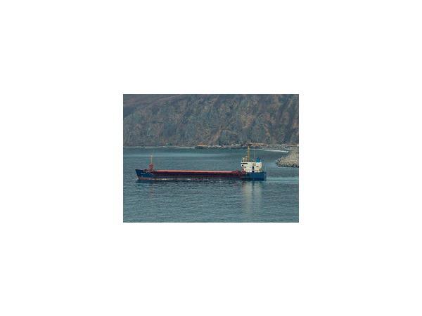 В результате крушения теплохода «Полайн» в Японском море погиб один моряк