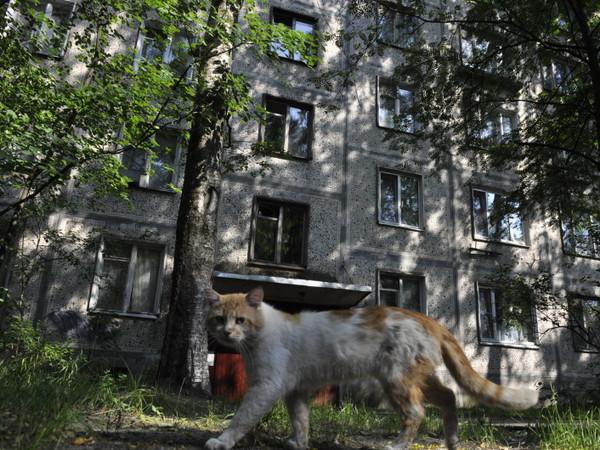 [Фонтанка.Офис]: На что могут и должны претендовать жители расселяемых домов?