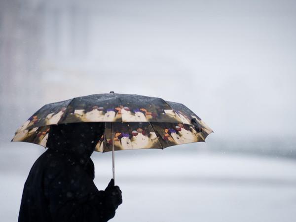 Петербург накрыло снегом