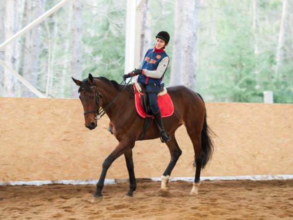 Предновогодние чудеса: В конном манеже для паралимпийцев возведут еще одну стену