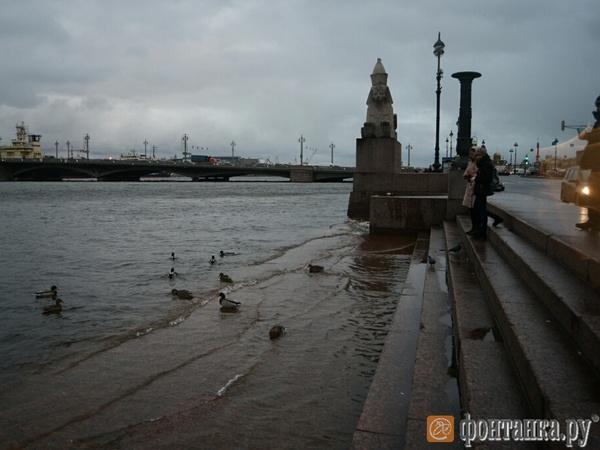 Вода в Неве поднялась выше отметки 160 см