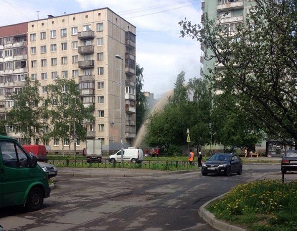 На проспекте Ударников забил фонтан (Иллюстрация 1 из 1) (Фото: Кирилл Чайковский, «ДТП и ЧП| Санкт-Петербург»)
