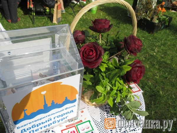 Как из свеклы розы вырезать