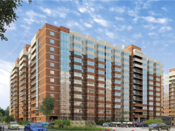 Развитие пригородов: «Новое Янино»