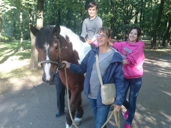 День на коне