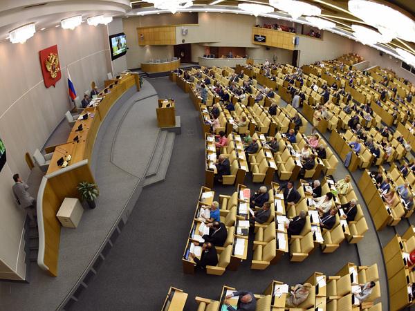 Чем занимаются в Думе депутаты от Петербурга