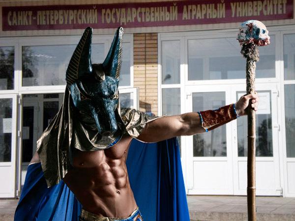 Коллаж Фонтанка/PressFoto/vk.com