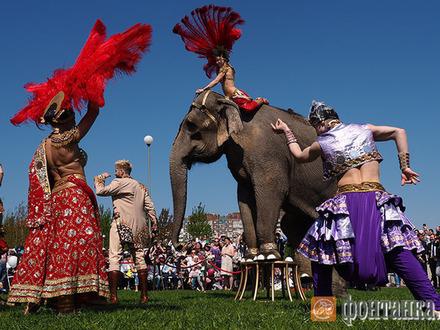 День Доброго Слона
