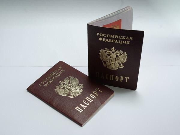 Как по закону лишить гражданства