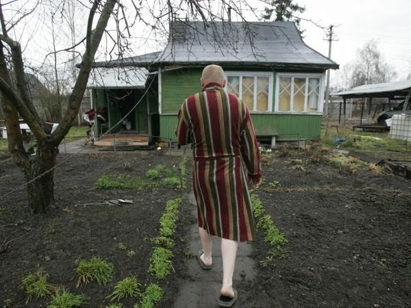 Квадрат Синочкина: В Ленобласти запретили создание новых дачных поселков