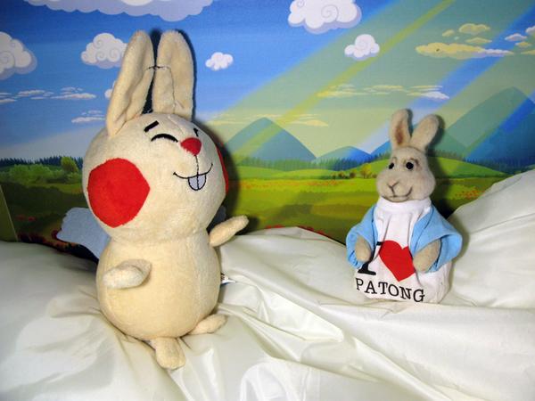 Зайцы расскажут о благотворительности в Instagram