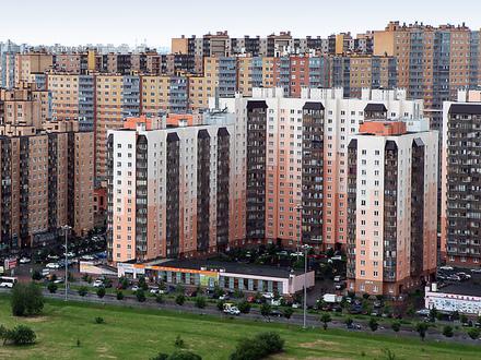 10 мечт человека из Кудрово