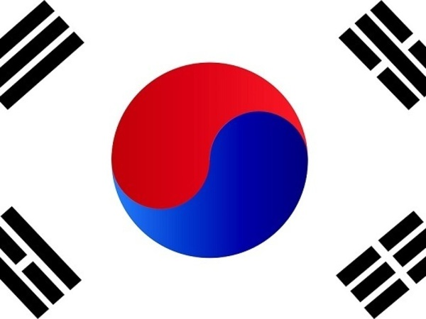 В ходе протестного митинга в Сеуле погибло два человека