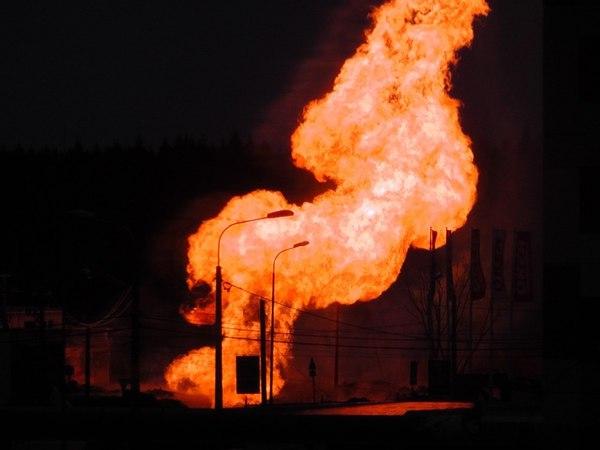 Под Гатчиной полыхает газопровод