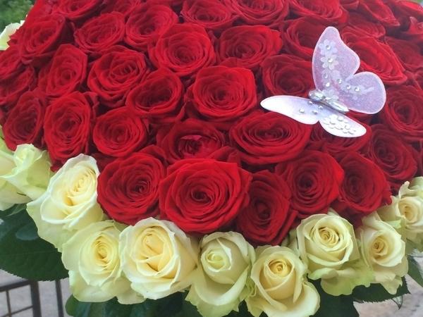 101 роза для Эллочки-людоедки