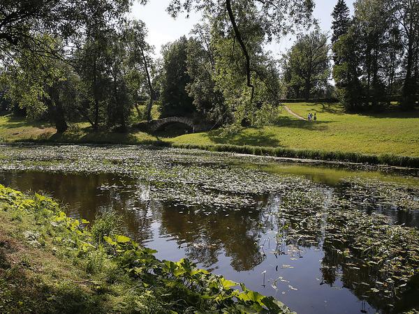 Полиция ищет миллионы на дне Славянки
