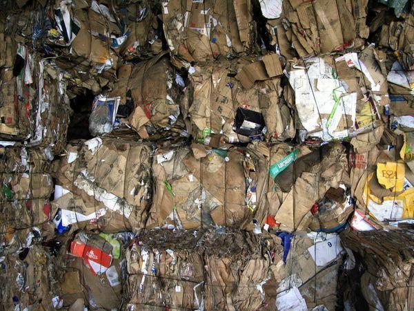 Смольный предъявил счет за мусор