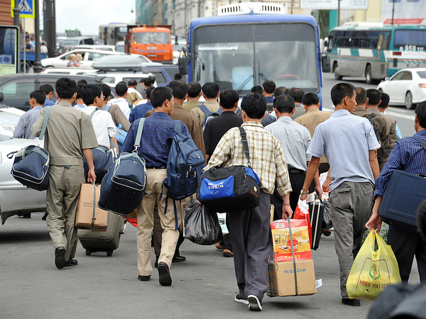Мигрантские души. Смольный проигрывает диаспорам борьбу за потоки из Средней Азии