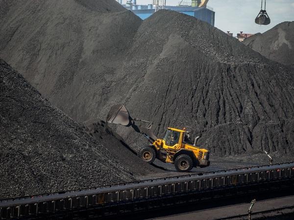 Высоцкий разрез. Московский бизнесмен собирается утроить перевалку угля в Высоцке
