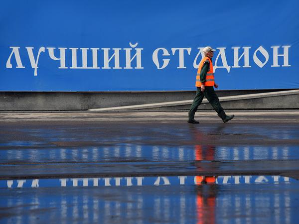 Гендиректор «Газпром Арены»: «Как бы странно ни звучали слова Албина, но птицы реально клюют»