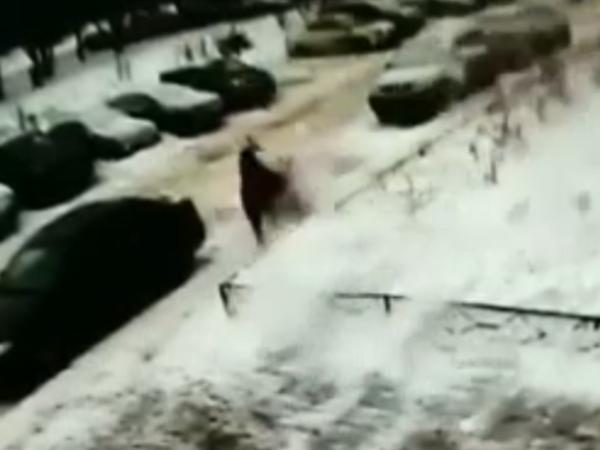 Падение снега на Подвойского, после которого пострадал ребенок, попало на видео
