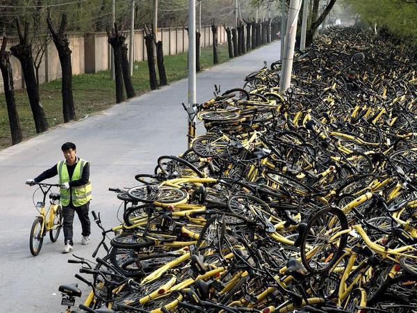 Велогород поедет с китайцами наперегонки