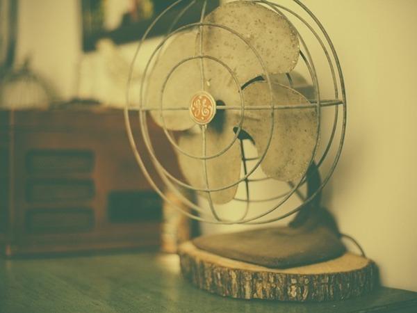 Охлаждаемся и машем: из-за аномальной жары в Петербурге дефицит вентиляторов
