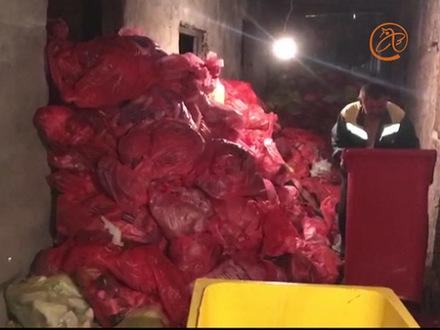 Эпидемия рядом. Больницы Петербурга маскируют особо опасные отходы под бытовой мусор