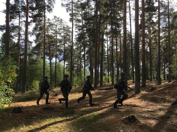 «Стоять на своей земле и не ждать помощи». Как Финляндия готовится защищать себя без НАТО