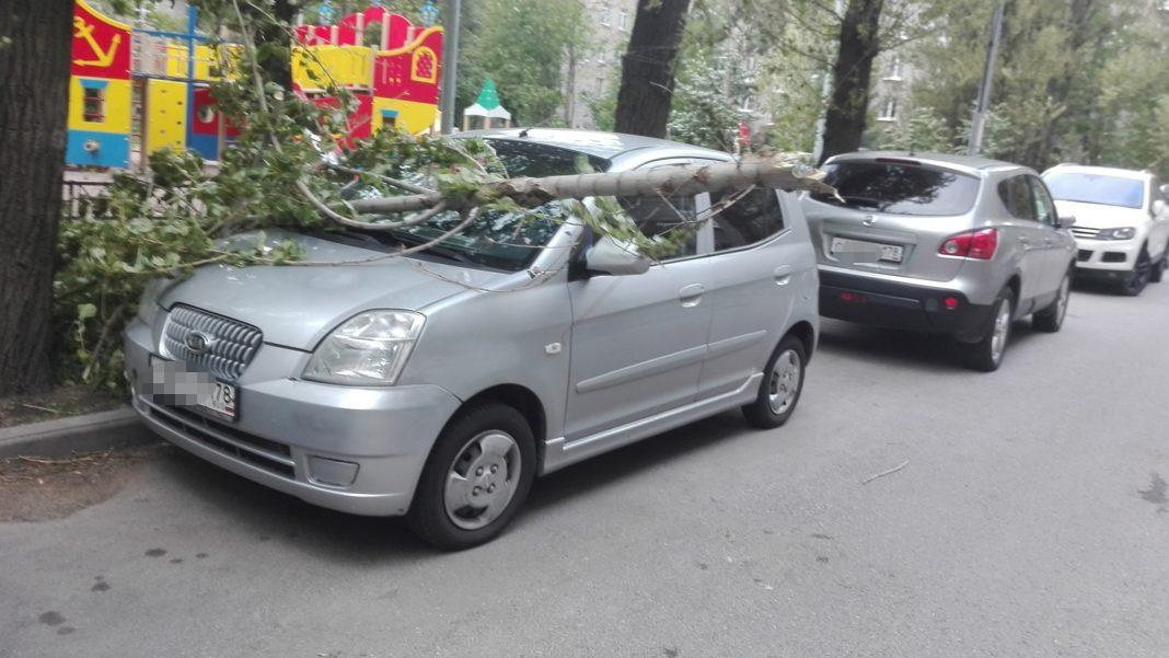 Улица Васи Алексеева