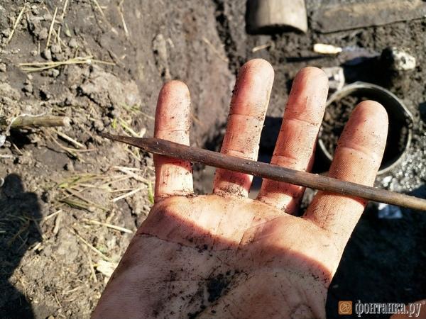 Кости, горшки и каменный нож: археология прервала строительство трассы М-11 Москва – Петербург