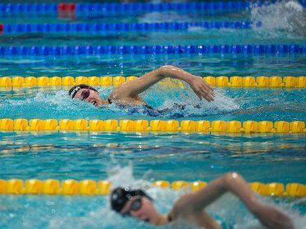Заняться плаванием, не выходя из дома, теперь возможно