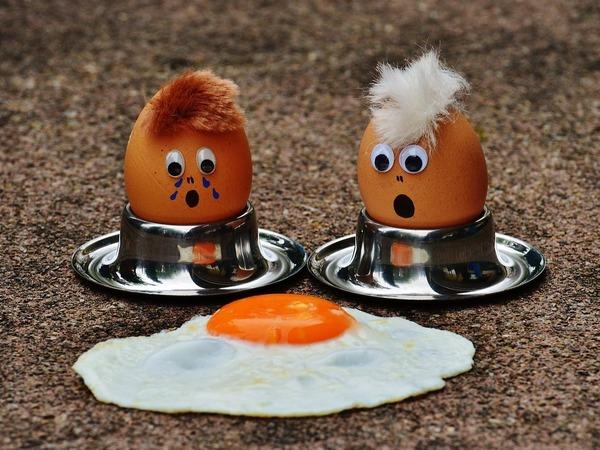 Что вы несете! Как петербуржцам не остаться без куриных яиц